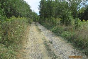 Droga przed przebudową - img_0908.jpg