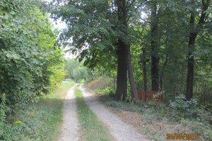 Droga przed przebudową - img_0909.jpg