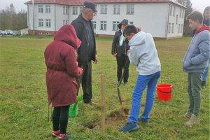 100 drzew na 100-lecie odzyskania Niepodległości - 20180510_0001.jpg