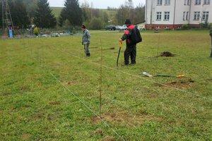 100 drzew na 100-lecie odzyskania Niepodległości - 20180510_0002.jpg