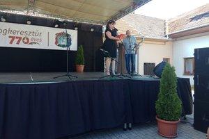 wyjazd do partnerskeij Gminy Bodrogkeresztúr - 20183008_0019.jpg